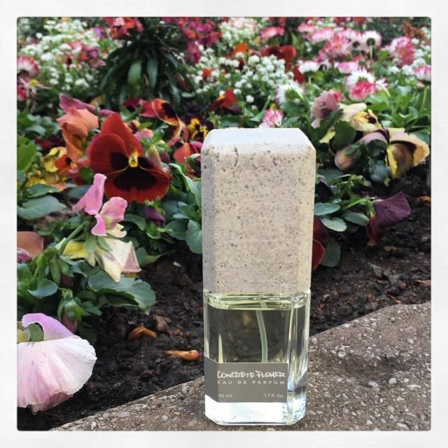 Urban verspielt frisch und frei  das ist Concrete Flowerhellip