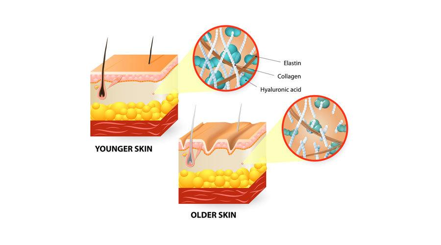 Abendliche Hautpflege optimiert die Heilung und Zellregeneration