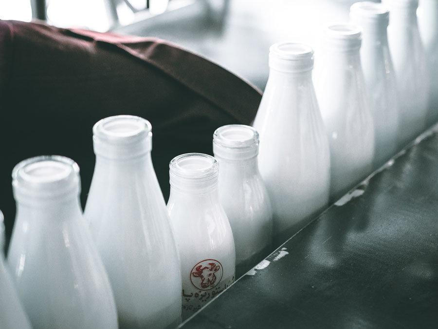 Macht Milch die Haut kaputt? Alternativen zur Kuhmilch